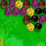 Bubble Insecte