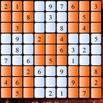 Sudoku Puzzle 48